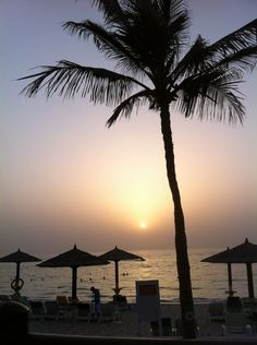 Sunset on the beach in beautiful Sharjah, UAE
