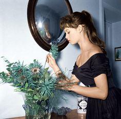Bridget Bardot at her home in Paris ...via Honey Kennedy