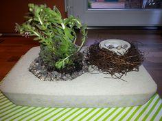 Beton und Pflanzen