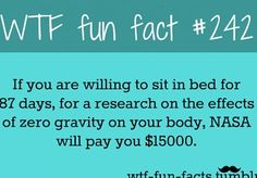fun fact - I think I could do this!!!