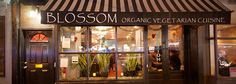 Visited Blossom Friday evening in May. Delicious food, completely vegan and organic. Popular place so book your table in advance.
