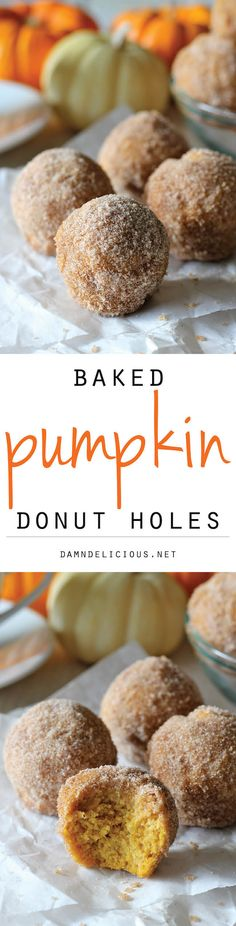 Pumpkin Donut Holes - Irresistible pumpkin mini muffins smothered in cinnamon sugar goodness! So good, you'll want to double or triple the recipe!