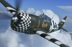 Flying legend returns to the skies: Rare WWII P-47 Thunderbolt fighter plane will fly again in Cambridgeshire | Mail Online