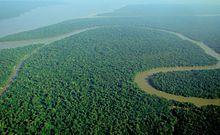 Amazon River - Wikipedia, the free encyclopedia