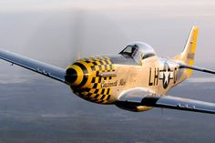 The North American P-51 Mustang was a successful long range fighter aircraft which set new standards of excellence and performance when it entered service in the middle years of World War II (1943) and is still regarded as one of the very best piston-engined fighters ever made. http://www.tri-statewarbirdmuseum.org/aircraft.html