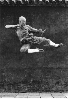 "Luka would have a painting of a Shaolin warrior in his house because he learned and trained at the Shaolin temple.  He learned a lot of things like,""...lesson number one in acupuncture. One little poke there and a dead man would sing."" (page 151)"
