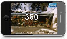 #sealife #360panoraamakuva