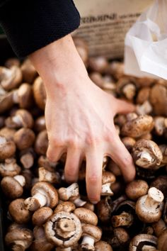 Be sure to grab a few handfuls on mushrooms to add to your meals. www.powerofmushrooms.com.au