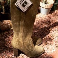 Frye Shoes - NWT FRYE Pull On Suede Boots
