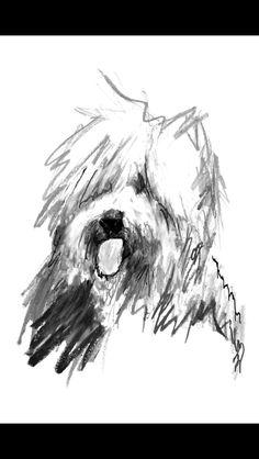 Old English Sheepdog - www.rockyandjames.com
