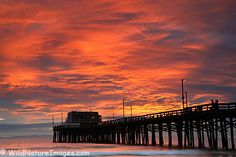 Never get tired of the beautiful pier shots and sunsets!