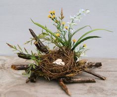 Bird Nest - Spring Nest - Coffee Table Decor - Spring Centerpiece - SALE - Woodland Spring