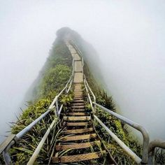 The 'Stairway to Heaven' in Oahu, Hawaii.