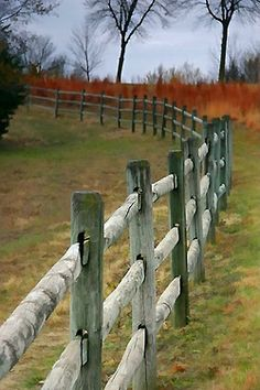 I want this kind of fence for my horses.