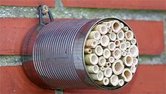 Building nesting aids for bees - Pin Coffee