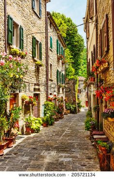 Find Narrow Street Old Town Italy stock images in HD and millions of other royalty-free stock photos, illustrations and vectors in the Shutterstock collection. Thousands of new, high-quality pictures added every day. Italy Street, Old Street, Beautiful Streets, Beautiful Places, Urban Landscape, Landscape Art, Old Town Italy, Brick Lane, Flower Backdrop