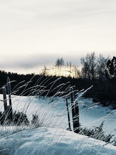 Gålå - Norway ♡ Norway, Snow, Mountains, Sunset, Black And White, Nature, Travel, Outdoor, Outdoors