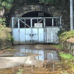 旧生駒トンネル入口 手前の水たまりは雨水ではなく地下水が漏れ出ているものだそうです