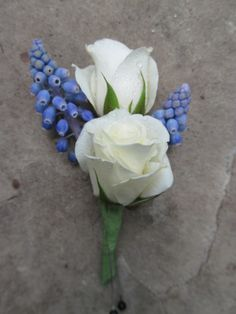 Our boutonniere design for a spring wedding, muscari is a great element for a touch of cornflower blue.
