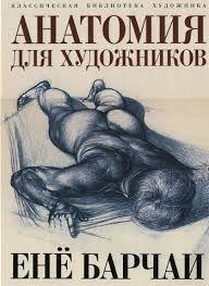 Картинки по запросу анатомией для художников