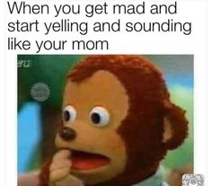 Memes Humor, Fuuny Memes, Hilarious Memes, Funny Images, Funny Pictures, Funny Pics, Me Too Meme, Life Memes, Offensive Memes