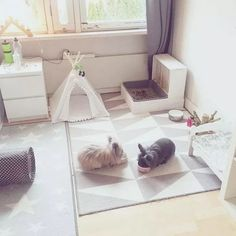 43 This DIY Dog Crate Furniture Piece Will Transform Your Living Room ? Home & Garden Design Indoor Rabbit House, Indoor Rabbit Cage, House Rabbit, Pet Rabbit, Rabbit Hutch Indoor, Rabbit Pen, Diy Bunny Cage, Diy Bunny Toys, Bunny Cages