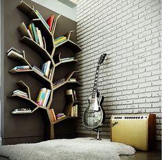 photo estante.png