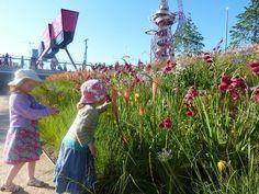 Queen-Elizabeth-Olympic-Park-18 « Landscape Architecture Works | Landezine
