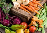 5 mitos sobre os alimentos orgânicos