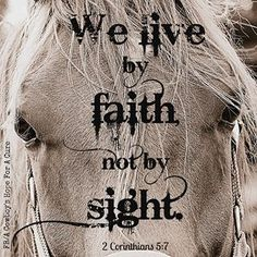 2 Corinthians 9:7.  We live by Faith and not by sight.                   Bible verse reminder.                      Beautiful horse's face.