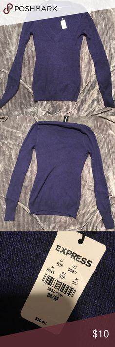 Purple/blue sweater Never worn, tags still on. Pretty purple/blue sweater from Express Express Sweaters V-Necks