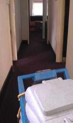 the 68 best carpet cleaning london images on pinterest carpet rh pinterest com