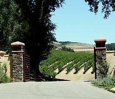 20 Wineries in Paso Robles