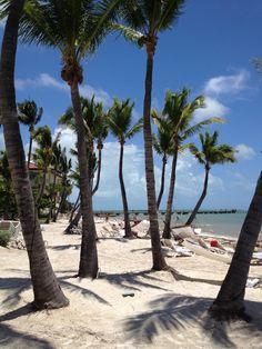 Casa Marina - Key West.  Our little beach spot for six days.  Heavenly!
