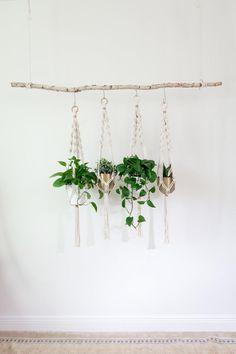 Rope Plant Hanger, Macrame Plant Hangers, Hanging Plant Wall, Plant Hooks, Diy Hanging, Diy Plant Stand, Plant Stands, Décor Boho, Bedroom Plants
