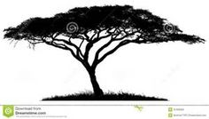 African Tree Clip Art - - Yahoo Image Search Results