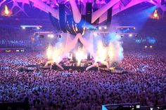 sensation white amsterdam