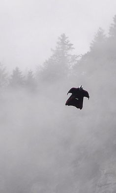 wingsuit pilot, lauterbrunnental, swiss alps