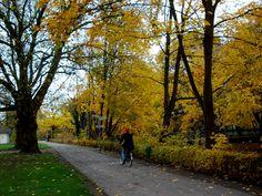 hamm westfalen:autunno 2012.foto:fausto ciotti