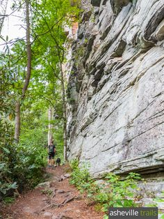 Hike the Plunge Basin Trail to the steep-walled depths of the Linville Gorge floor