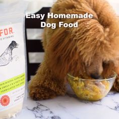 Easy Homemade Dog Food Thanksgiving Dinner for your dog – Turkey, Pumpkin & Corn. Dog Biscuit Recipes, Dog Treat Recipes, Baby Food Recipes, Homemade Baby Foods, Homemade Dog Treats, Tofu, Make Dog Food, Puppy Food, Dog Biscuits