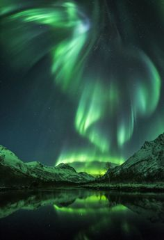The vivid green Northern Lights resemble a bird soaring over open water in Olderdalen, Norway