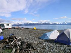 Bury your toes in a black sandy beach while viewing sparkling glaciers in the distance. That is what we call beach camping, 'Only in Alaska' style! Alaska Camping, Camping Spots, Alaska Travel, Alaska Cruise, Camping Gear, Adventure Town, Adventure Awaits, Alaska Salmon Fishing, Train Travel
