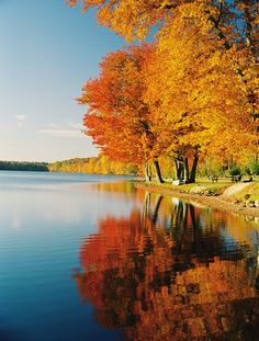 24 autumn photography tips for awesome pictures of Fall | Digital Camera World