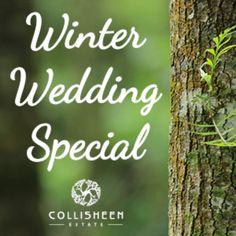 Wedding Ideas To Make, Next Wedding, Perfect Wedding Dress, Wedding Menu, Diy Wedding, Wedding Ceremony, Wedding Colors, Wedding Styles, Wedding Flowers