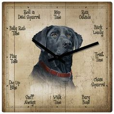 Loyal Lab Dog 10 X 10 Square Wall Clock