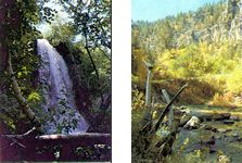 Spearfish Canyon - South Dakota - I am super stoke about doing this area! It has waterfalls, mill houses, wildlife and botanical garden!