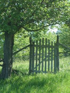 Old Gate..reminds me of granny's house