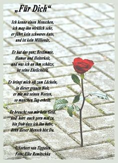 File & # 10 beautiful sayings and wisdom from . & # - One of 14158 files in the category Most Beautiful Pictures, Cool Pictures, German Quotes, Gifts For Mum, Birthday Quotes, Boyfriend Gifts, Love Quotes, Lyrics, Happy Birthday