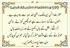 SAHIH MUSLIM HADITH 599 | Authentic Islamic Info